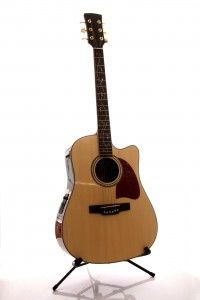 buying a acoustic guitar Poway guitar lessons 619-306-3664