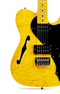 Semi Hollow Body Electric Guitar
